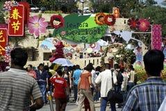 festivalen 2008 blommar sentosa Arkivbild