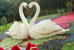 festivalen blommar kiev Royaltyfria Bilder