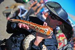 festivalen piratkopierar portland pytonormred Royaltyfri Foto