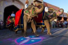 festivalgangaur jaipur Royaltyfri Fotografi