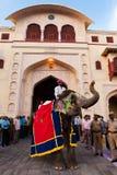 festivalgangaur jaipur Royaltyfri Bild