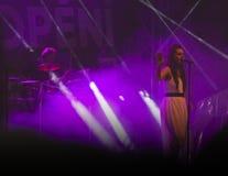 Festivalmusik för öl 2017 Arkivbild