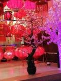 Festivals de Tanglung image stock