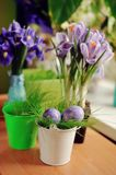 Flowers and Easter eggs Stock Photography