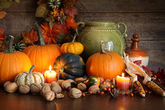 Festive Autumn Variety Of Gourds And Pumpkins Royalty Free Stock Photos