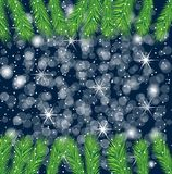 Festive background with the branches of christmas tree Stock Photo
