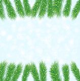 Festive background with the branches of christmas tree Royalty Free Stock Images