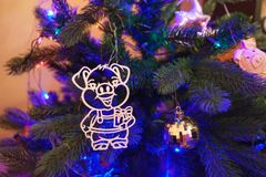 Festive background for Chinese new year pig 2019. Year of pig, toy pig on the tree. Festive background for Chinese new year pig . Year of pig, toy pig on the stock image