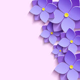 Festive background with 3d flowers violets Stock Photos