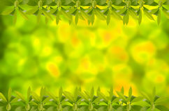 Festive background with defocused lights. Royalty Free Stock Photos