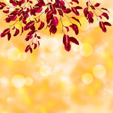 Festive background with defocused lights. Bokeh background. illustration Royalty Free Stock Images