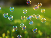 Festive background with flying shiny soap bubbles on the green Royalty Free Stock Photo