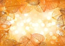 Festive background of vector autumn leaves Stock Illustration