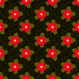 Festive background.Seamless pattern. Red flower. Poinsettia. Stock Photography
