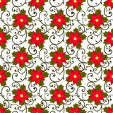 Festive background.Seamless pattern. Red flower. Poinsettia. Royalty Free Stock Images