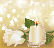 Festive background with white rose, pearl Royalty Free Stock Image