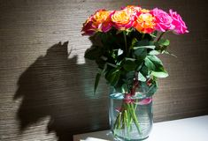 Festive bouquet of fresh roses with original yellow and crimson coloration in glass jar. Image with romantic spirit. Festive rose bouquet is symbol of happiness royalty free stock photos