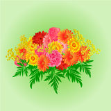 Festive bouquet gerbera and roses vector. Festive bouquet gerbera and roses green background vector Illustration Stock Photo