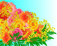 Festive bouquet of gerberas and roses vector. Festive bouquet of gerberas and roses green background vector Illustration Stock Image