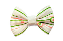 Festive bow. Stock Images