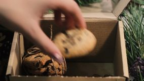 Festive box with Christmas cookies stock video footage