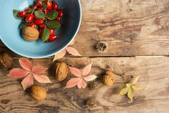 Ripe red dog-rose fruits in blue cup with pink leaves, nuts on an old wooden table. royalty free stock photos