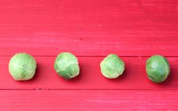 Festive Brussels Sprouts in a Row Stock Photography