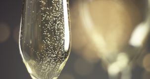Festive bubbles in a glass of sparkling wine. Close up video of trails of bubbles going up in champagne glasses on gray background with blurred lights in warm stock video footage