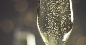 Festive bubbles in a glass of sparkling wine. Close up video of trails of bubbles going up in champagne glasses on gray background with blurred lights in warm stock video