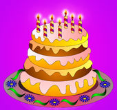 The Festive cake with burning candle. For birth day Stock Image
