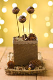 Festive cake pops in Christmas box Royalty Free Stock Photo