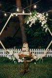Festive cake three tiers fresh fruit celebration royalty free stock image