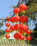 Festive chinese red lantern Stock Photography