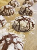 Festive Chocolate Crinkle Cookies. With chocolate and powdered sugar Royalty Free Stock Images
