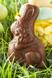 Festive Chocolate Easter Bunny royalty free stock photos