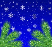 Festive christmas background with the branches of silver fir. Illustration Royalty Free Stock Images