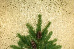 Festive christmas background with fir tree branches Stock Image