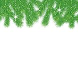 Festive christmas background with green branches. Vector  illustration Royalty Free Stock Photo
