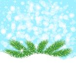 Festive christmas background with green branches Stock Photos