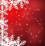 Festive christmas background with snowflakes Royalty Free Stock Image