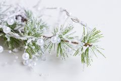 Festive Christmas decoration with pine branch and white pearls g. Arland ornament Stock Image