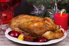 Festive Christmas duck with plums and apples Stock Image