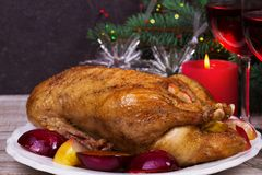 Festive Christmas duck with plums and apples Stock Photography