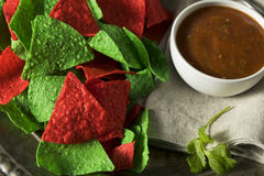 Festive Christmas Green and Red Tortilla Chips. With Salsa Stock Photos