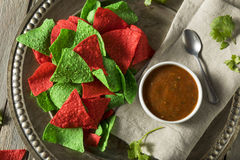 Festive Christmas Green and Red Tortilla Chips. With Salsa Stock Image