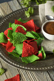 Festive Christmas Green and Red Tortilla Chips. With Salsa Stock Images