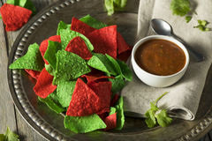 Festive Christmas Green and Red Tortilla Chips. With Salsa Royalty Free Stock Images