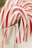Festive Christmas Peppermint Candy Cane Stock Photography