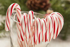 Festive Christmas Peppermint Candy Cane Stock Image