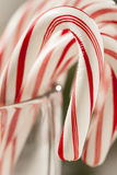 Festive Christmas Peppermint Candy Cane Royalty Free Stock Photo